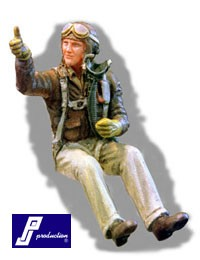 USAF pilot WWII, seated