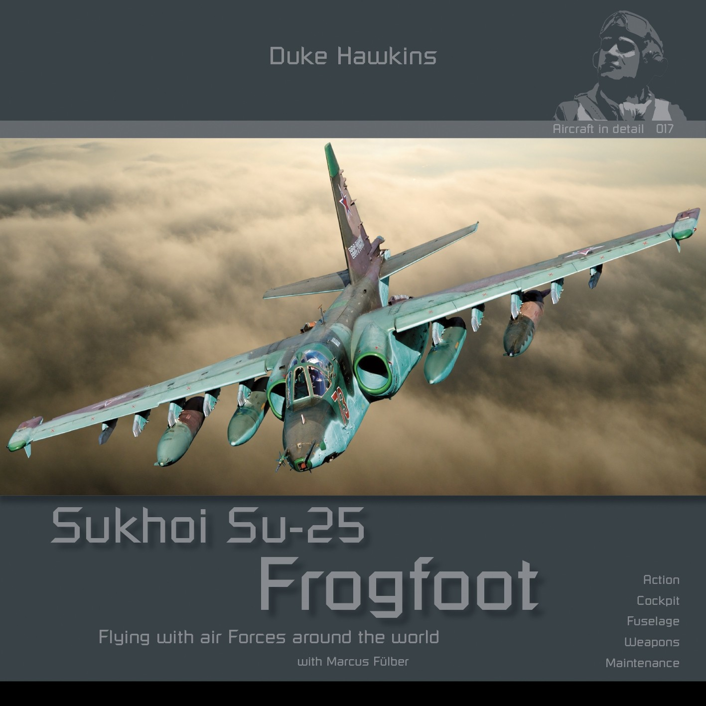 Sukhoi Su-25 Frogfoot by Duke Hawkins