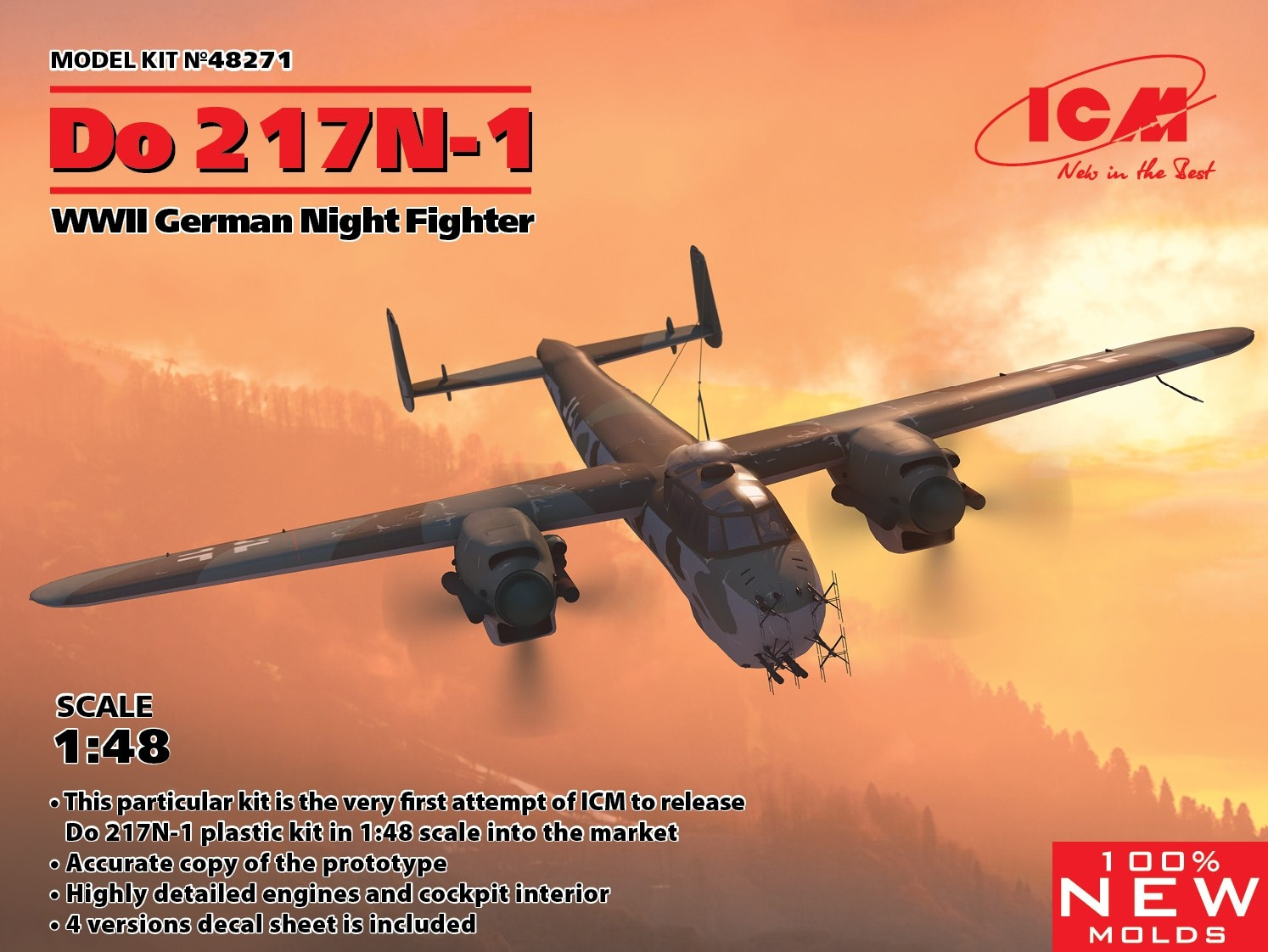 Do217N-1 Night fighter NEW MOLDS