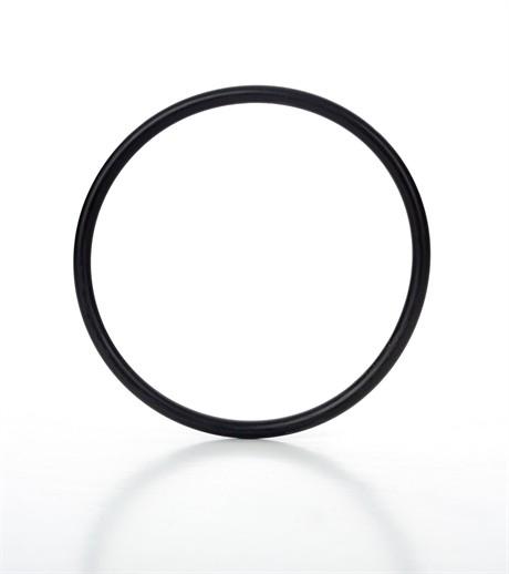 Xtreme Patriot nozzle o-ring