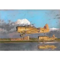 Harvard Mk.IIA (SwAF Sk16)