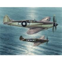 Seafire Mk.XV, Far East Service COMING