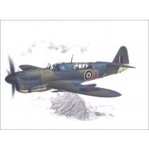 Fairey Firefly Mk.I, Home Fleet