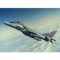 BAe Harrier T.10/12