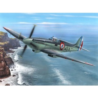 Seafire Mk.15, Aéronavale Service COMING