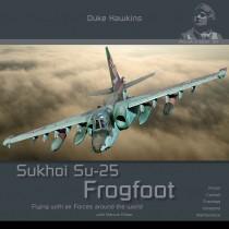 Sukhoi Su-25 Frogfoot by Duke Hawkins