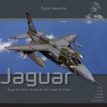 Duke Hawkins: The Sepecat Jaguar