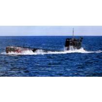 U137, Submarine Project 613 Whiskey-III class