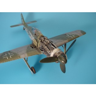 Fw190D detailed engine set HAS
