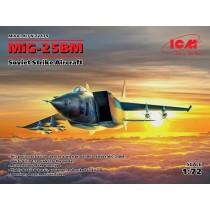 MiG-25BM Soviet Strike Aircraft