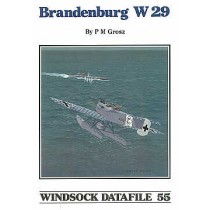 Hansa-Brandenburg W.29