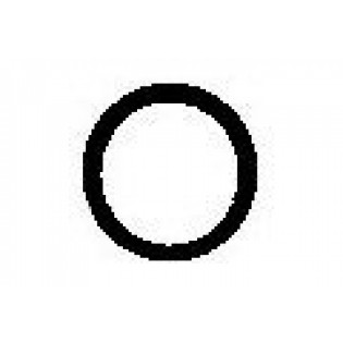Body O-rings (2)