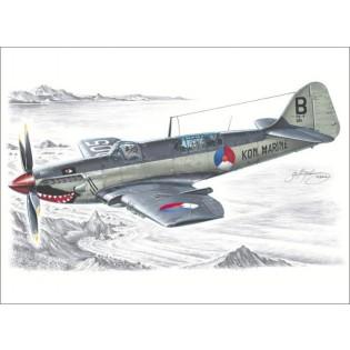 Fairey Firefly Mk.IV/Mk.V